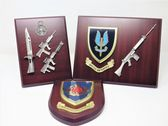 Wall Shields and Plaques